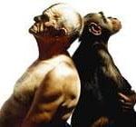 Evolução do Macaco ao Homem
