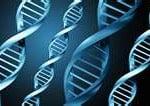 Sequenciamento de DNA